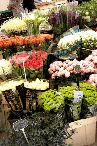 Flores de St. Tropez